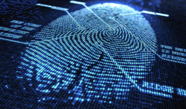 Delito Cibernético, el tercer riesgo para los negocios globales