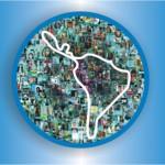 Latinoamericanos: cada vez más y más amantes de las redes sociales