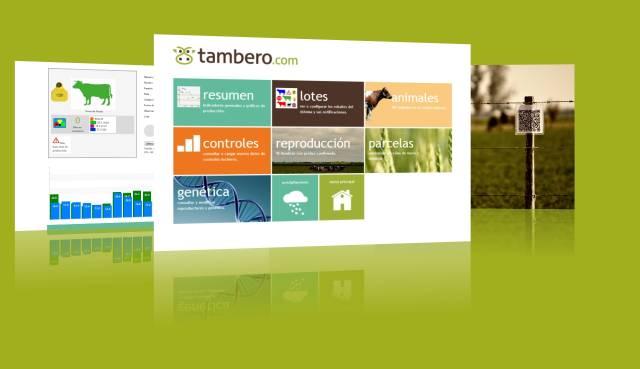 Tambero