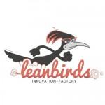 LeanBirds, pura metodología Lean para encontrar el camino de tu startup
