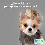 """Así es como Helpways pretende ser el """"centro de soluciones de la vida cotidiana"""""""