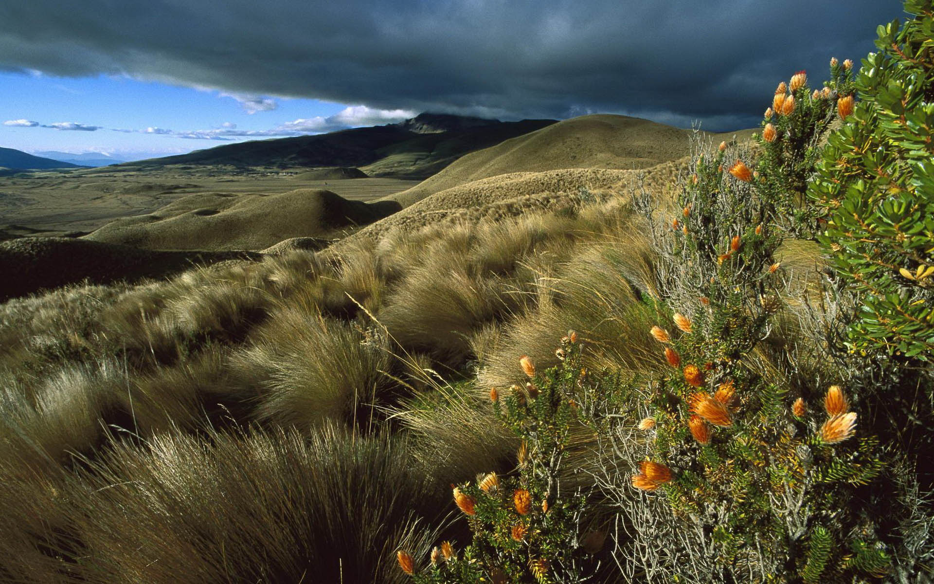 Natural-Scenery-Ecuador