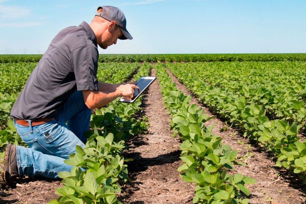 Las TIC para mejorar la agricultura sustentable y la seguridad alimentaria